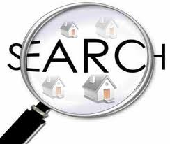 search startups