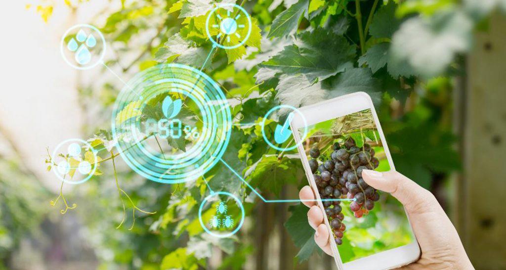 5 Revolutionary Agritech Startups