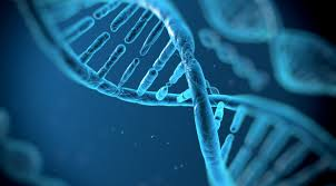 Biotech VC Funding News Highlights Emerging Renaissance