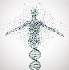 What Are Human Genomics Startups and What Will They Change?